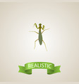 realistic mantis element of vector image