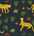 seamless pattern witn leopards vector image