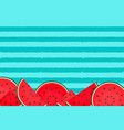 abstract summer background with watermelon vector image