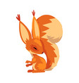 cute squirrel funny little orange rodent animal vector image vector image