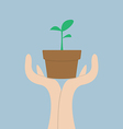 Hands holding small plant Growth concept vector image vector image