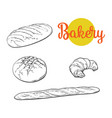 sketch white loaf bread croissant set vector image