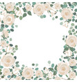 white rose flowers and silver dollar eucalyptus vector image