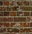 grunge brick wall texture 2505 vector image vector image