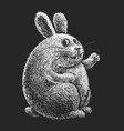 hand drawn cartoon easter bunny on black vector image
