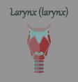 human organ icon in flat style larynx vector image