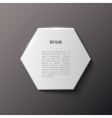 Paper hexagon white banner vector image vector image