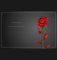 red rose single flower on dark gray background vector image vector image