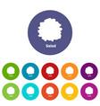 salad icons set color vector image