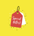 special offer tag icon coupon with special offer vector image