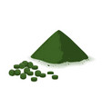 spirulina chlorophyll or chlorella powder and vector image vector image