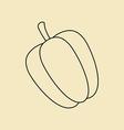 Sweet Bulgarian Bell Pepper vector image vector image