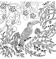 Toucan coloring page vector image vector image