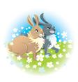 Two happy rabbits vector image vector image