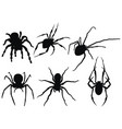set spiders collection black and white vector image
