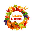 Thanksgiving day poster of autumn harvest holiday