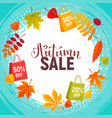 autumn sale poster vector image