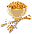cereal cornflakes vector image