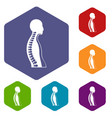 human spine icons set hexagon vector image vector image