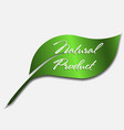 natural product icon green leaf logo vector image vector image