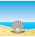 opened sea shell with pearl on sea shor vector image vector image