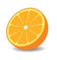 Orange half on white background vector image
