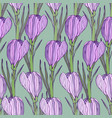 floral pattern with purple flowers seamless print vector image
