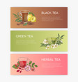 collection of horizontal banner templates with vector image vector image