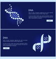 dna collection of web pages vector image vector image
