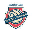 emblem template with volleyball ball design vector image vector image