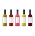 realistic detailed 3d wine bottles set vector image vector image