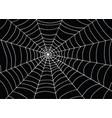 white spider web on black background doodle vector image
