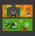 apes and monkeys in flat style banner vector image