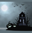 ghost old house mistery place halloween vector image