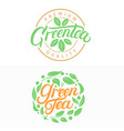 green tea hand written lettering logos vector image