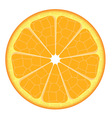 Orange slice on white background vector image