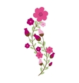 Beautiful flowers ornament vector image