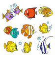 cartoon sea fishes color and outlined vector image vector image
