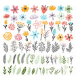 different florals elements for your design project vector image vector image