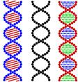 DNA Symbols vector image