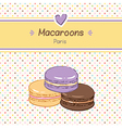 macarons three vector image vector image