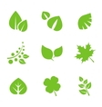 Set of Green Leaves Design Elements vector image