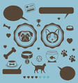 Cat vs dog infographic vector image