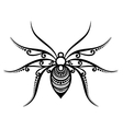 Beautiful Spider Exotic Insect vector image vector image