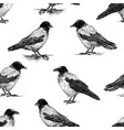seamless pattern crows sketches vector image vector image