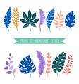set tropical leaves rainforest leaves vector image vector image