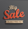 Inscription big sale for banner vector image