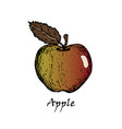 hand drawn of an apple with a leaf vector image vector image