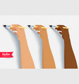 hands painting with brush vector image vector image
