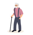 senior man with cane flat vector image vector image
